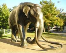 Columbian Mammoth Sculpture