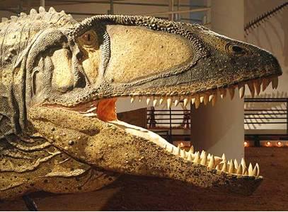 Carcharodontosaurus Dinosaur