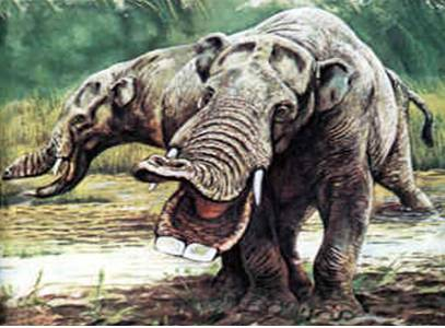 [Image: Gomphotheres.jpg]