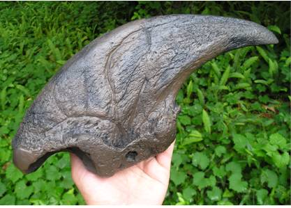 Harlan's Ground Sloth Claw cast from Florida.