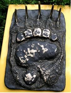 Brown Bear foot cast