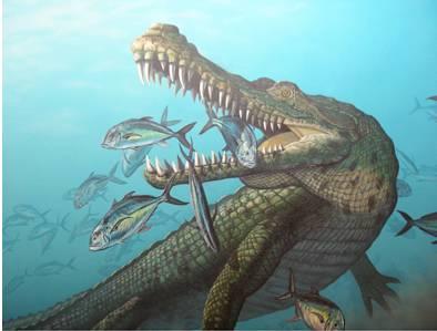 Prehistoric American Crocodile